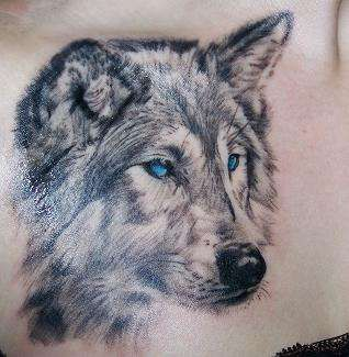 Wolf tattoo..I wish I had the guts to get one this big