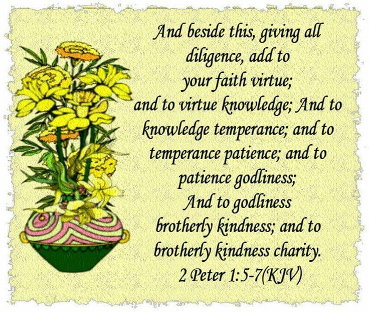 Phillippians 4 6 7 Cast Your Cares Upon The: 570 Best Images About My Memory Verses On Pinterest