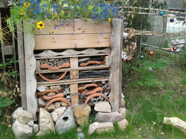 how to build an insect house
