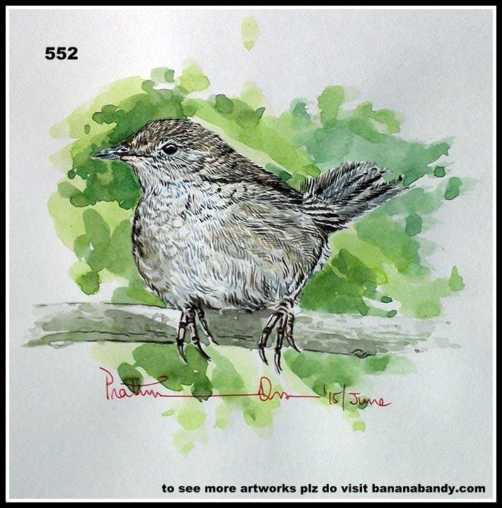 PAKHI DEKHUN PAKHI CHINUN # 528/552(Observe the Bird and recognize)..SPOTTED BUSH WARBLER ... WATERCOLOUR...A4...2015... [FROM PHOTOGRAPH OF MR. DEBORSHEE GOGOI] ... The spotted bush warbler (Locustella thoracica) is a species of Old World warbler in the Locustellidae family. It is found in Bangladesh, Bhutan, China, India, North Korea, Laos, Mongolia, Myanmar, Nepal, and Russia. Its natural habitat is boreal forests. 13 cm; c. 12 g. A fairly small, warm brown bush-warbler with relatively…