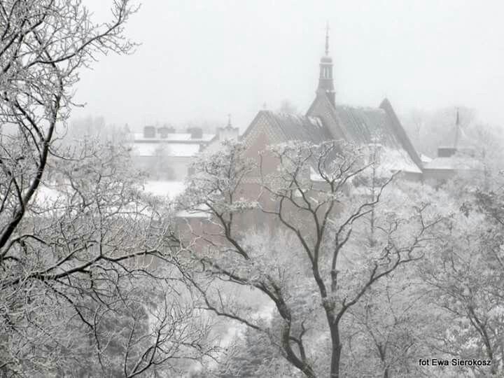 Tak wygląda moje miasto :)