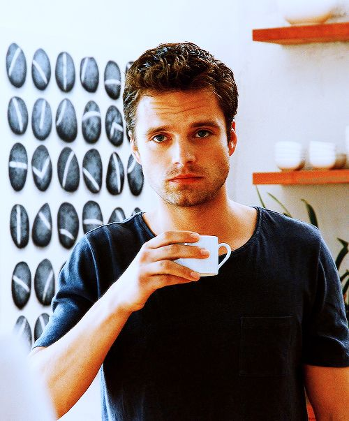 ... dedicated to the great actor Sebastian Stan. Please enjoy your stay