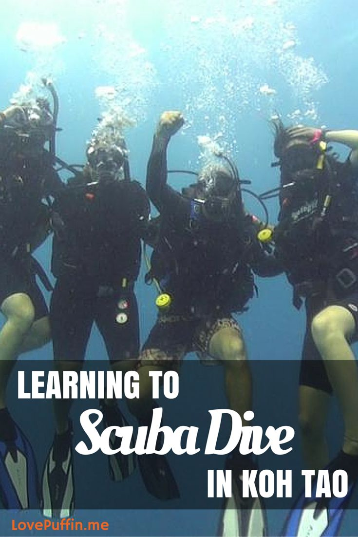 Learning to Scuba Dive in Koh Tao - It's a rite of passage on any Southeast Asia backpacking trip to peel on that wetsuit, slap on those fins and learn to Scuba dive. The place to do this? Unmistakably Koh Tao, Thailand - LovePuffin Travel Blog