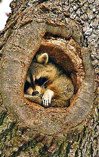 Just a little snug