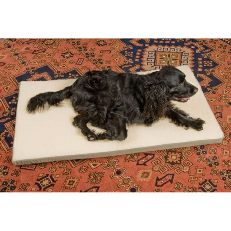 Snoozer Pet Dog Crate Pads 2 in. Foam - The Snoozer Pet Crate Pad with 2-inch Foam features a cover composed of water-resistant poly/cotton with a Sherpa fur top. It is also machine washable. $30.40