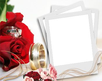 wedding frame with red rose