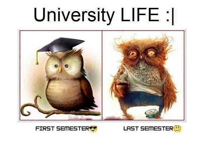 University life, College life and Life on Pinterest