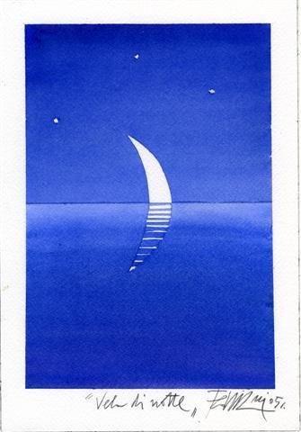 "Sergio Fedriani ""vela di notte"""