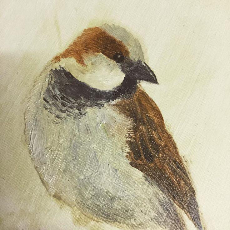 Sparrow by Ben Farnell (a work in progress). #birdartben #birds #oilpainting #birdpainting #sparrow #art