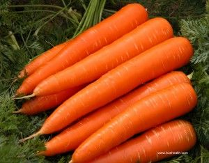 Carrots Contain 5 Times Vitamin A Compare To Others!