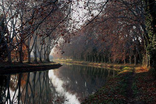 #51 - Go on a canal ride through the Canal du Midi
