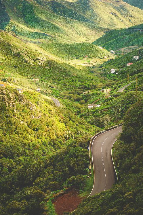 Canary Islands, Spain #yoamocanarias