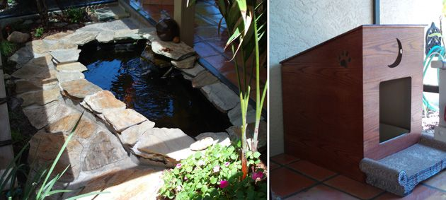 17 best images about outdoor kitty kennel ideas on for Koi pond maine coon cattery