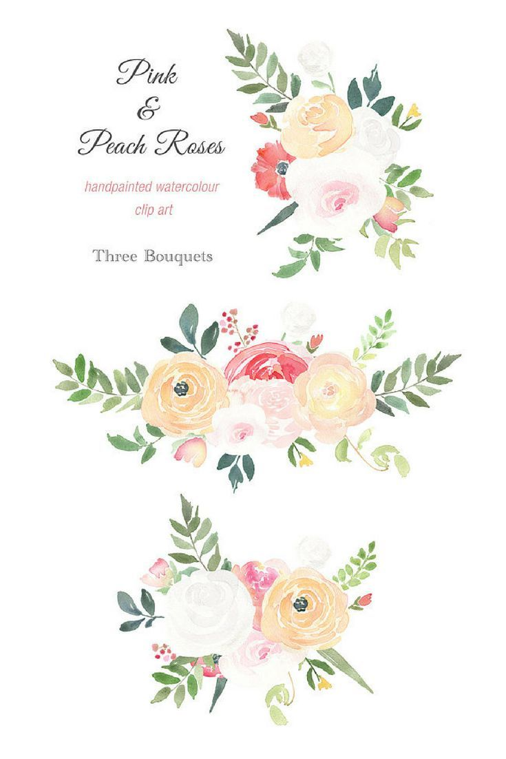 Watercolour Flower Clipart Pink And Peach Roses Elements