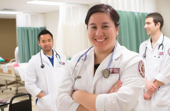 essay nursing profession