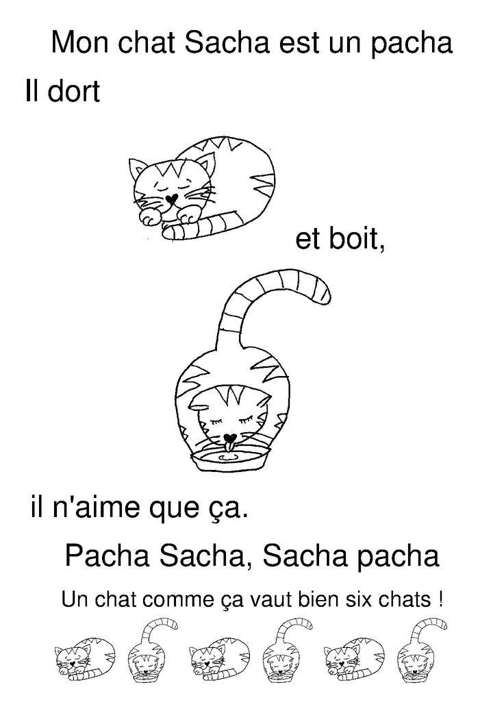 mon chat Sacha est un pacha