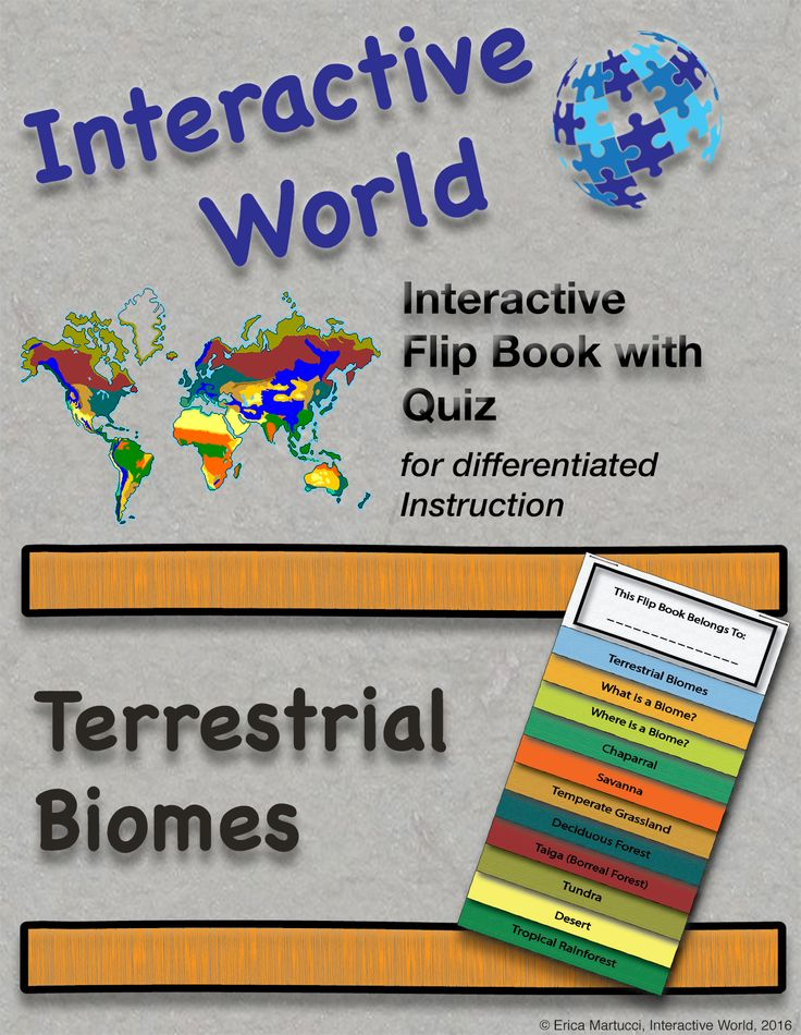 Interactive Flip Book with Quiz and answer key!  Covering ♦ Terrestrial Biomes ♦ The Chaparral ♦ The Savanah ♦ Temperate Grassland ♦ Deciduos Forest ♦ Taiga (Borreal Forest) ♦ The Tundra ♦ The Desert ♦ Tropical Rainforests  #TpT #FlipBook #TerrestrialBiomes #InteractiveWorld #HMHMarketplace