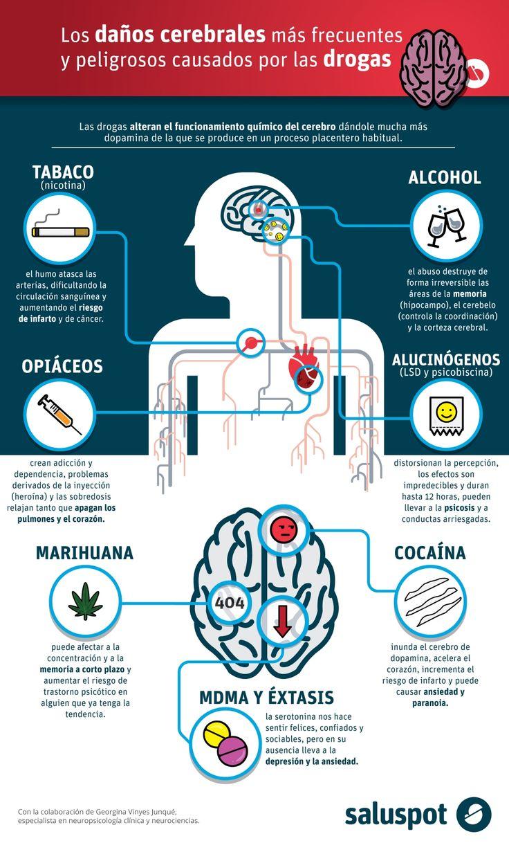 Escuchamostodo el tiempo quelas drogas son malas, pero no todos sabríamos explicar por qué.En Saluspot creemos que para prevenir hay que informar al detalle de los efectos nocivos de las drogas....