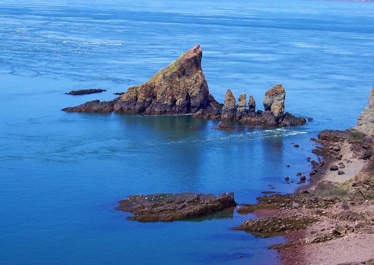Sea Stacks, Bay of Fundy, Nova Scotia.