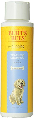 Burts Bee Tearless Puppy Shampoo, 16-Ounce - http://www.thepuppy.org/burts-bee-tearless-puppy-shampoo-16-ounce/