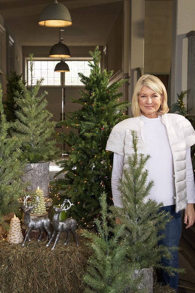 Christmas 2020 Martha Stewart Christmas in July in 2020 | Christmas inspiration, Christmas in