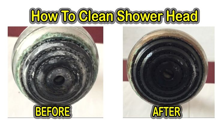 17 Best Ideas About Shower Head Cleaning On Pinterest