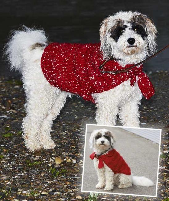 S8772 - Auf vier Beinen durch den Winter: Das geht am besten, wenn Bello, Waldi oder Hasso in diesen frechen Hundemantel eingehüllt ist. Denn erstens sind Bauch und Rücken dann vor der beißenden Kälte geschützt. Zweitens übersieht niemand einen Hund, der beim Gassigang auffälliges Rot trägt und bei Nacht sogar leuchtet. Das Garn Schachenmayr Lumio macht's möglich! #LumioWolle