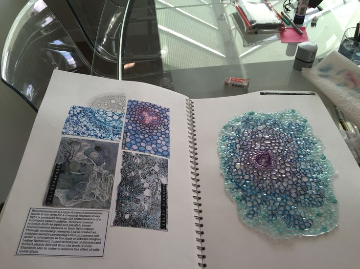 Bioluminescent cells investigative sample page final part of sketchbook