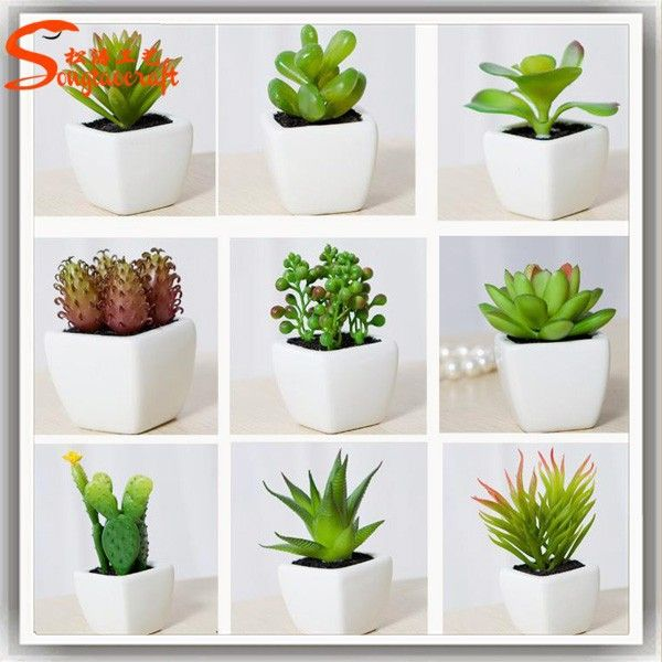 Combination Of Potted Succulent Plant Wholesale Artificial Succulent Plant Micro Mini Succulent Plant , Find Complete Details about Combination Of Potted Succulent Plant Wholesale Artificial Succulent Plant Micro Mini Succulent Plant,Mini Succulent Plant,Artificial Succulent Plant,Succulent Plant Wholesale from Artificial Crafts Supplier or Manufacturer-Guangzhou Songtao Craft Artificial Tree Co., Ltd.