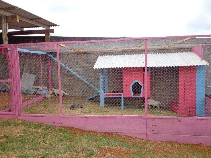Achei um gatil lindo! As imagens são do perfil da Danielly .   Feito com tábuas pintadas de rosa e fechado com tela de galinheiro. O espaço...
