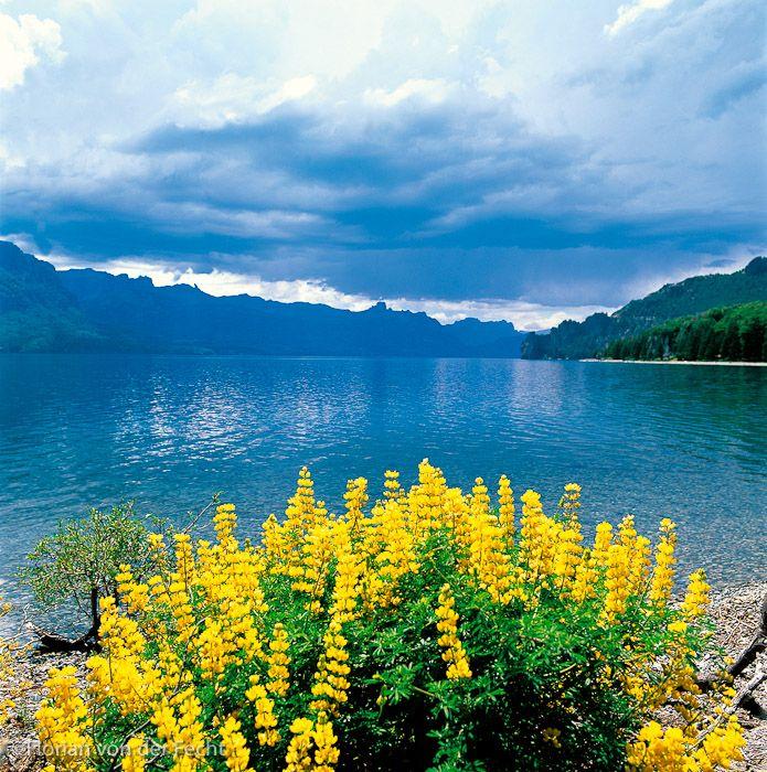 UNESCO Natural World Heritage Site - Parque Nacional Nahuel Huapi, Patagonia, Argentina