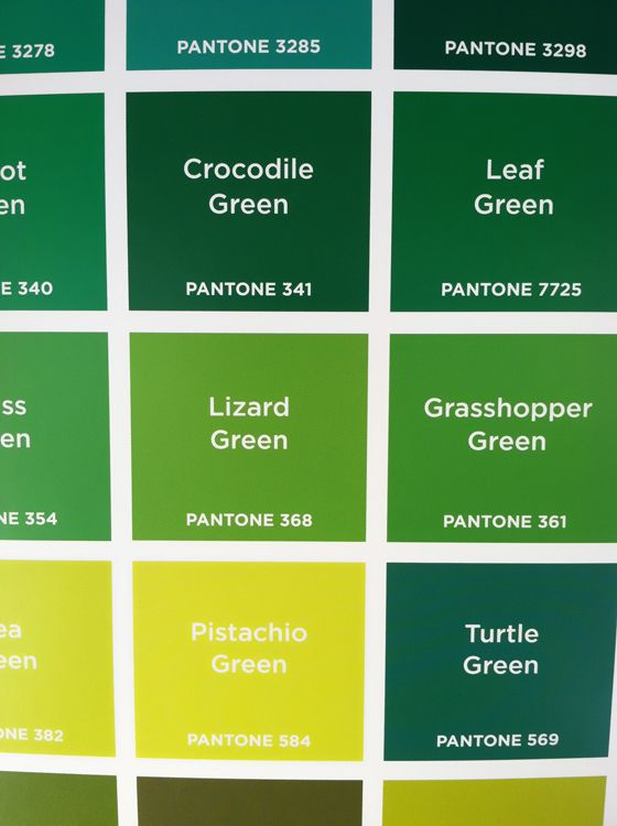 Pantone Colors Wood Working Pinterest Color Shades And Of Green