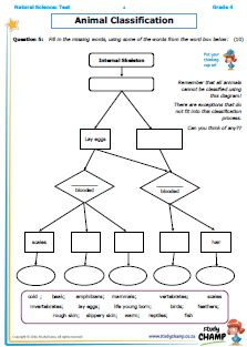 Natural Science : Grade 4 NS - Test: Animal classification