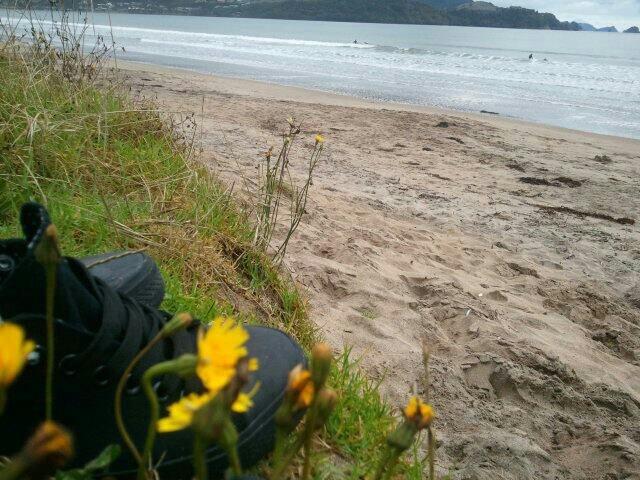 Beach day-charlotte tunnard
