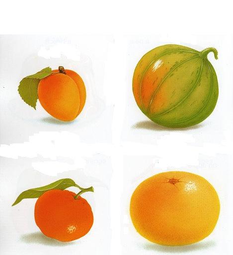 Imagenes de comida para imprimir - Imagenes y dibujos para imprimirTodo en imagenes y dibujos