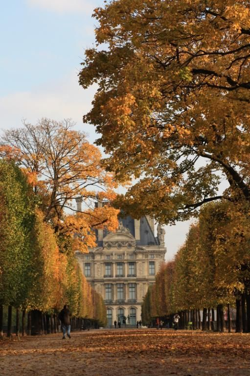 Jardin des Tuileries, Louvre, Paris, France--why WOULDN'T this gorgeousness remain forever etched in my soul?
