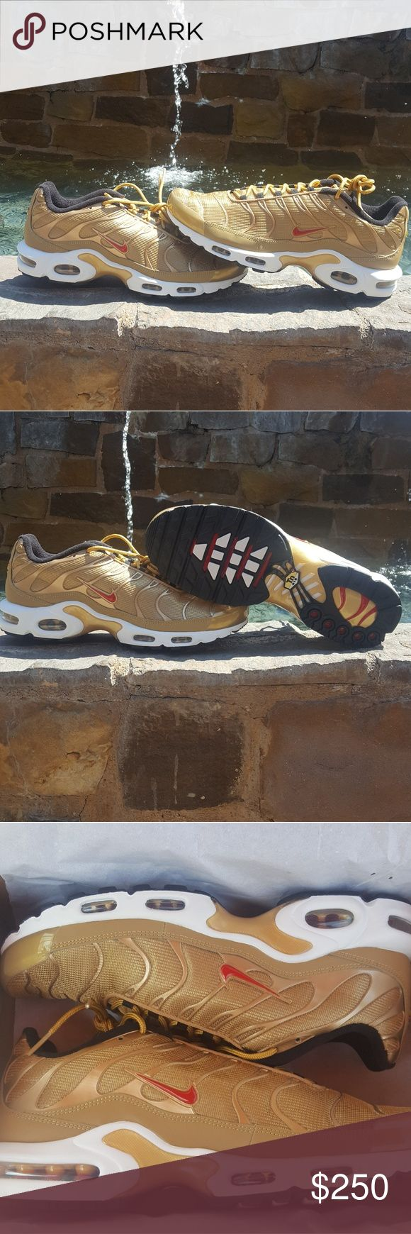 Nike Air Max Plus 95 Metallic Gold Brand new  Men's size 11 Dead stock Nike Shoes Athletic Shoes