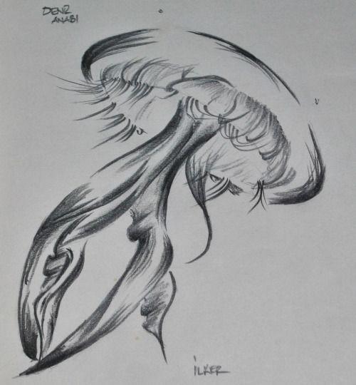 Denizanası | Kurşun kalem 2B,8B - Uçlu kalem 0,5mm 2B