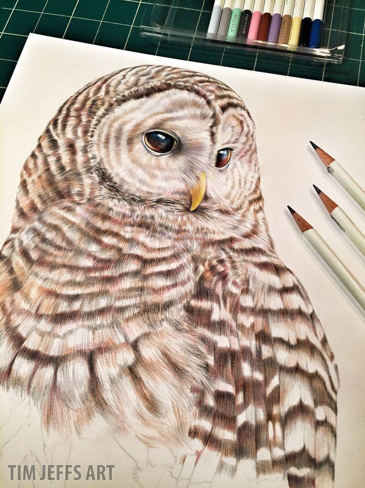 Snowy owl illustration by @timjeffsart using @tombowusa Irojiten Colored Pencils