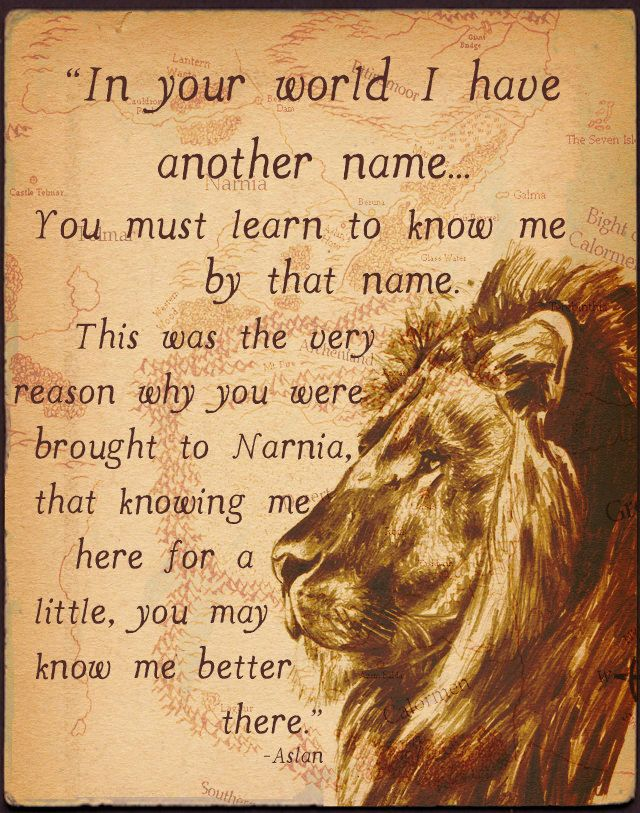 The Chronicles of Narnia by C.S. Lewis is a great series of