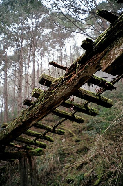 ~forgotten beauty~ 'Abandon rail' by Davidrummer - Tumblr