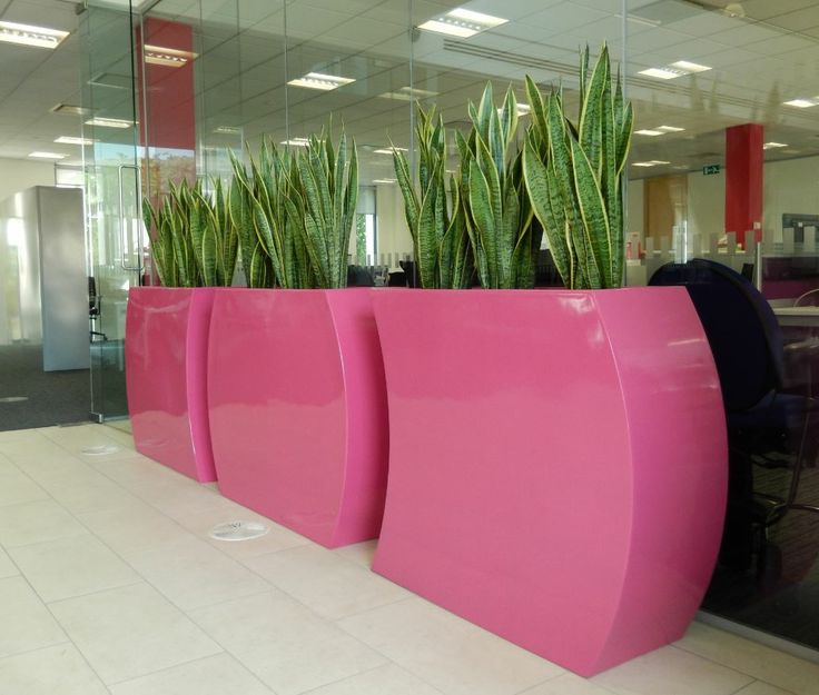 office plant displays. Office Breakout Area Curvy Trough Plant Displays Close Up - See More At Http:/