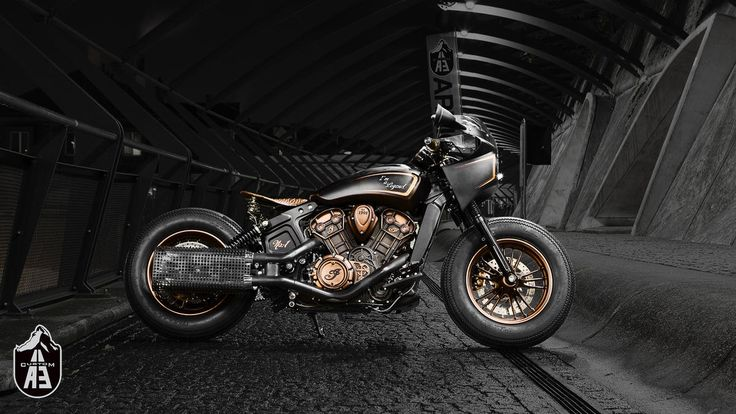 indian custom scout