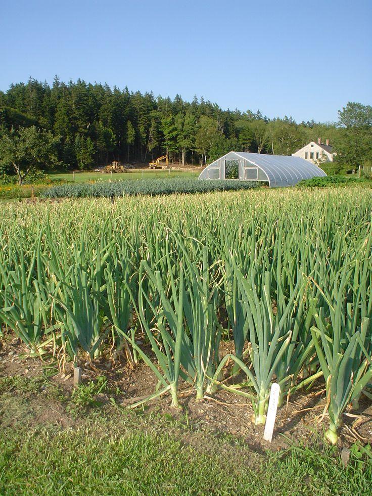 sustainable agriculture Sustainable agriculture integrates three main goals: environmental stewardship,  farm profitability, and prosperous farming communities sustainable agriculture.