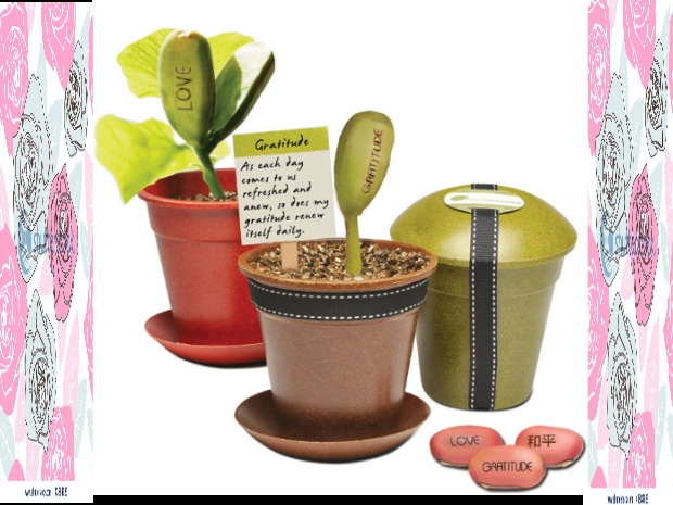 I Bean Inspired Pot: Beans Inscrib, Beans Inspiration, Crafts Ideas, Gifts Ideas, Gift Ideas, Unique Gifts, Book, Mr. Beans, Inspiration Pots