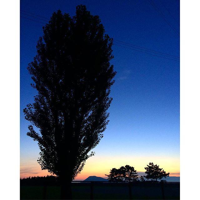 【17_chiko】さんのInstagramをピンしています。 《2016.7.9 Sat * 縦version✨ さっきと違う方角 * * #夜中にこっそり #あら#もうとっくに#7月10日  #イマソラ#空#雲#海#木 #マジックアワー #グラデーション #優しい#夕空 #寝落ち同盟》