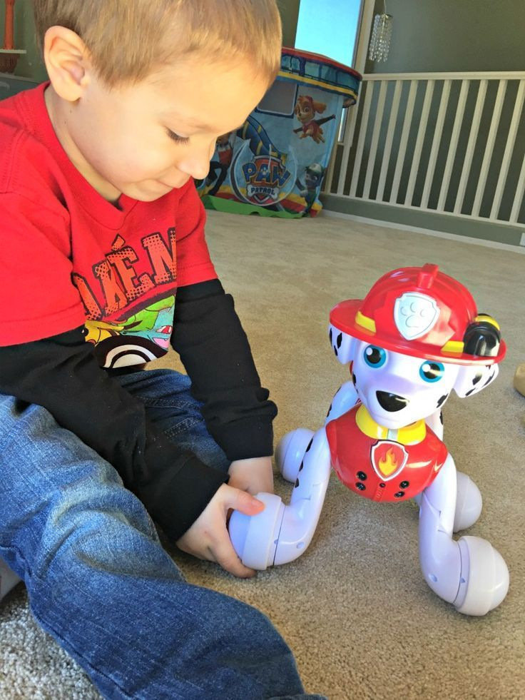 Most Popular Toys For Boys : Best images about gifts for year old girls on
