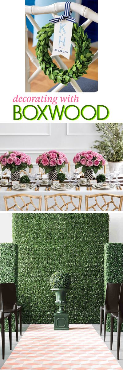 Decorating With Boxwood: Lush boxwood adds a natural element to decor for everything from weddings to dinner parties. Hang boxwood garlands from the ceiling, arrange boxwood balls as centerpieces, or use boxwood mats as backdrops. The event decorating options are endless. Here are 10 ways to decorate with boxwood.