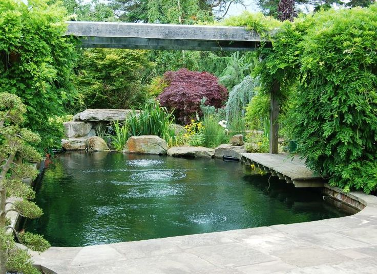 25 Best Ideas About Pond Construction On Pinterest Koi