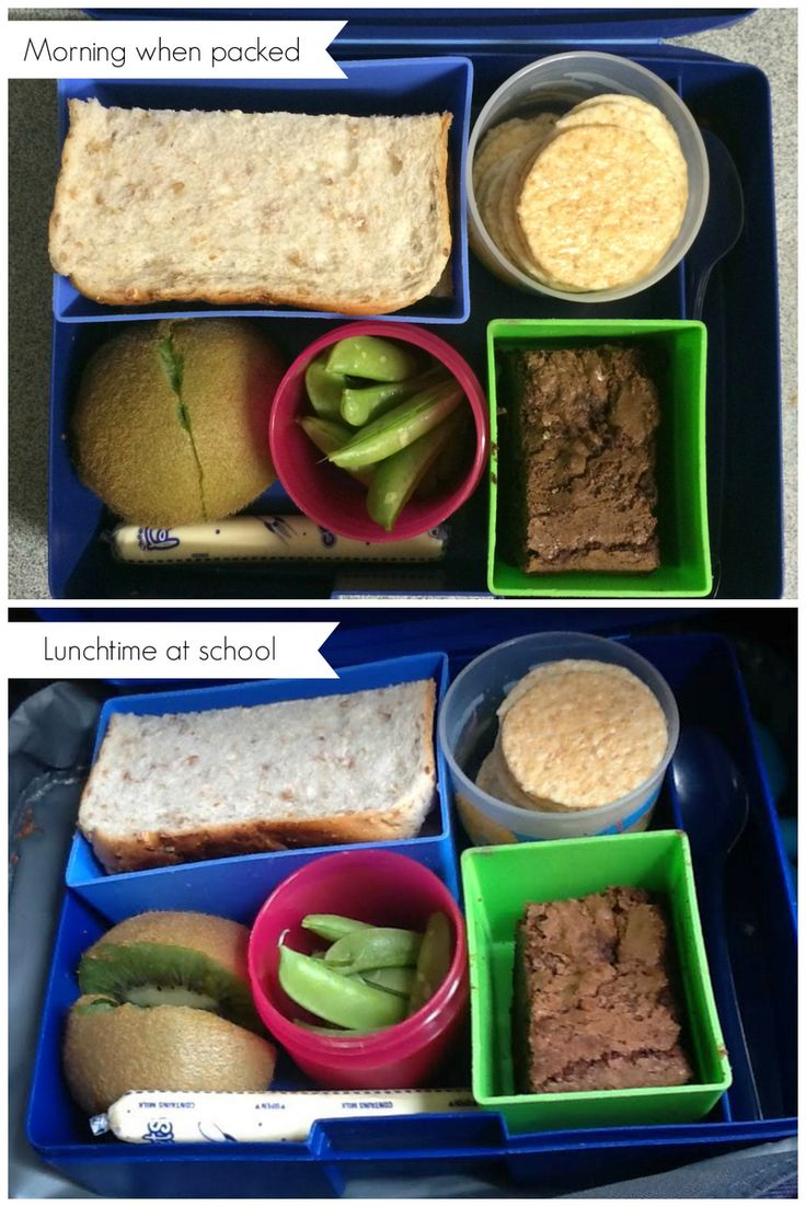 Bento laptop lunch boxes - how they keep food during the day